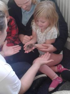 Mobile zoo at Happy Kids Clifton, Rotherham day nursery